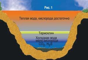 Термоклин